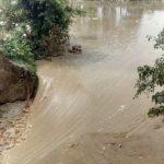 महराजगंज:महाव का पूर्वी तटबंध टूटा किसानो के होश उड़े